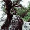 Wisata Curug Sindaro di Karangsambung