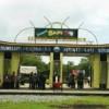 Wisata Edukasi Sitiadi ; Wisata Peternakan Sapi