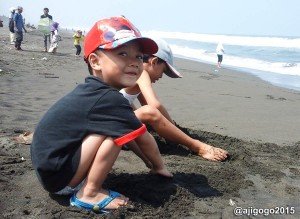 pasir-pantai-lembupurwo